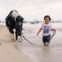 Balade a cheval enfant